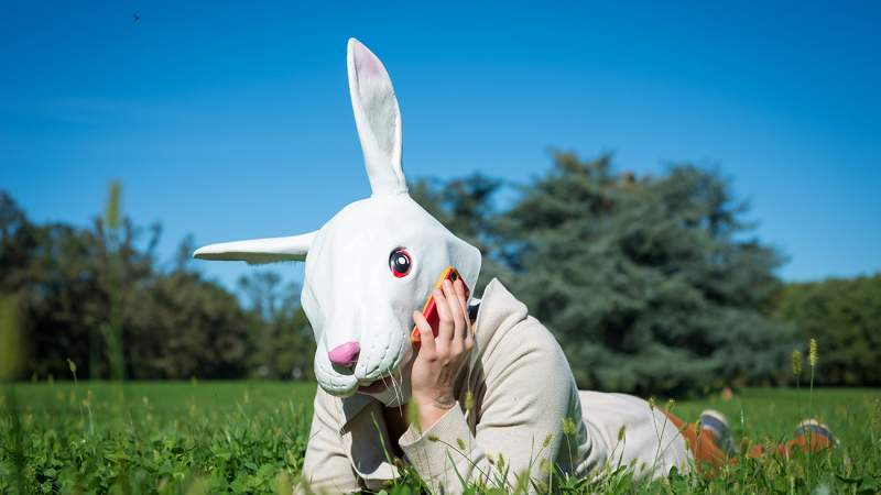 I-Have-the-Easter-Bunny's-Phone-Number