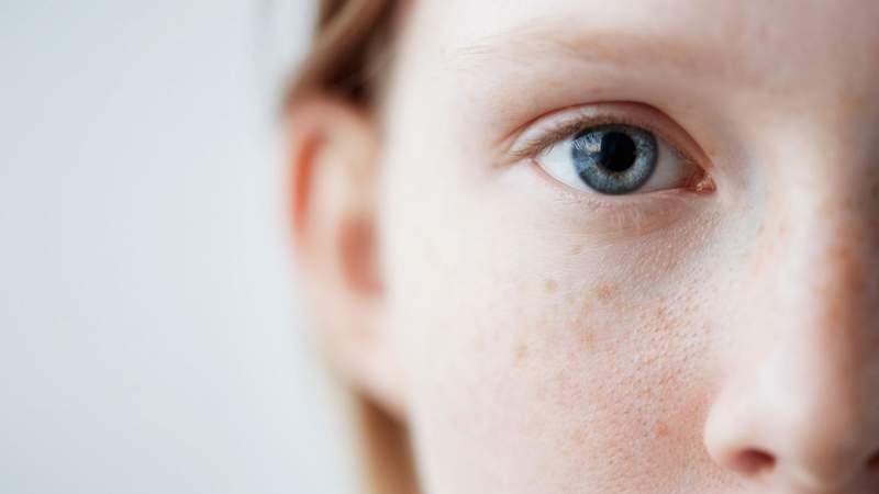 avemario / Shutterstock.com